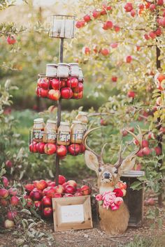 Apple Orchard Wedding Inspiration - www. - Styling Ideas for Weddings Parties autumn wedding colors / wedding in fall / fall wedding color ideas / fall wedding party / april wedding ideas Autumn Wedding, Rustic Wedding, Our Wedding, April Wedding, Dream Wedding, Wedding Bouquets, Wedding Favors, Wedding Flowers, Wedding Dresses