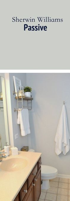 Sherwin Williams paint color Passive is a great option for any small bathroom. This cool toned light gray looks good on the wall in a small space.