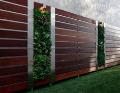 Garden wall as partition from wooden boards and vertical garden wall