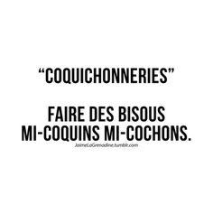 """""""Coquichonneries"""" Faire des bisous mi-coquins mi-cochons - #JaimeLaGrenadine #citation #punchline #francois #amour #love #lovequote"""