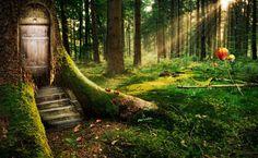 Trouver le chemin de la paix véritable.... De nos jours, la pollution a envahi tous les domaines de la vie : physique, moral, mental, spirituel… Or, la pollution est le signe d'un détournement de la loi d'évolution saine. C'est une maladie, une impureté, un non-respect des êtres. L'homme a pollué la terre par les pesticides, les produits chimiques, les radiations nucléaires…