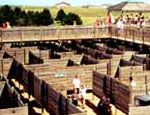 Black Hills Maze & Family Adventure, Rapid City SD. Everyone including adults, will have fun challenging the 37,000 sq. ft. two-level maze.  Black Hills history themed mini-golf. Free standing climbing tower, water wars. Bankshot basketball. Batting cage.