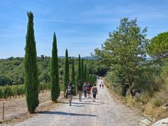 The territory of Gaiole in Chianti can be explored on foot and by bike. The already extensive network of hiking trails was recently renovated and newly marked. You can now choose among 15 different routes, which will make you discover the castles, the hamlets, the vineyards and the surroundings of Gaiole at their best. May we give you some advice?