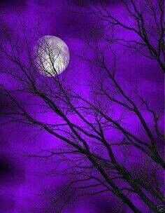 So very beautiful, purple sky and moon with tree silhouette painting idea.