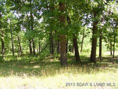 Nice level building lot with lots of nice trees. Private Lake for lot owners. Water and Electric available in Macks Creek MO
