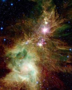 The infamous Christmas Tree Cluster  ✨. Hosting 40 super luminous stars. At the base of the cluster is its brightest member, S Mon, a bright blue-white variable star of magnitude 4.6 that is at least 8000 times as luminous as the Sun, and can be seen by the naked eye. The furry texture of the area next to this star is called the Fox Fur Nebula. @nasa . . #space #science #christmastree #spaceiscool #bos #happyholidays #astronomy #christmas #hanukkah #holidays #astrophysics #astrophotography…