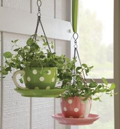 """Wondering if we could take the teacup pots we have now and make this.....saving $15   Teacup Flowerpot  Ceramic Teacup Flowerpot has drain holes and a black metal chain. Approx. 7""""diam. x 4""""h (123/4""""l, when hanging)."""
