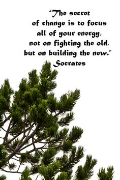 """The secret of change is to focus all of your energy, not on fighting the old, but on building the new. Great Quotes, Quotes To Live By, Inspirational Quotes, Cool Words, Wise Words, Friends Come And Go, Wanderlust Quotes, Healthy Quotes, Character Quotes"