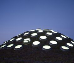 California Academy of Sciences, San Francisco, Ca.  Renzo Piano. 2008