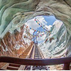 Expedition Everest in Animal Kingdom, Walt Disney World Disney Dream, Cute Disney, Disney Magic, Disney Theme, Disney Rides, Disney Parks, Walt Disney, Downtown Disney, Disney Cruise