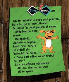 TimpMoca.ro - În vizită Funny Memes, Jokes, Truths, Humor, Random, Cheer, Husky Jokes, Humour, Animal Jokes