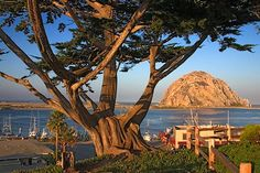 Beautiful Morro Bay. Popular destination for those exploring Paso Robles wine country