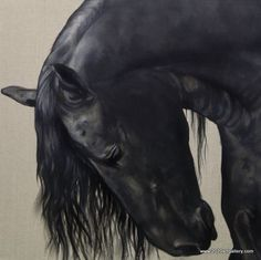 great blacks, horse by Tony O'Connor