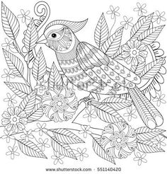 Adult anti stress coloring page with tropical bird. Hand drawn zentangle parrot sitting on blooming tree branch for colouring bool, art therapy, greeting card, decoration element.