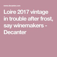 Loire 2017 vintage in trouble after frost, say winemakers - Decanter