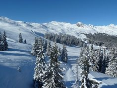 Skiing area Racines-Giovo in South Tyrol South Tyrol, Skiing, Mountains, Nature, Travel, Roots, Ski, Viajes, Traveling