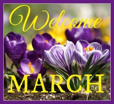 goodbye february welcome march Hello March Images, Hello January, Happy March, March Month, New Month, March Quotes, Happy Birthday Wishes Photos, Spring Images, Joelle