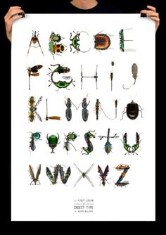 Alphabet   Insect                                         by Asier Belloso