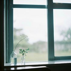 雨のささやき | by **mog**