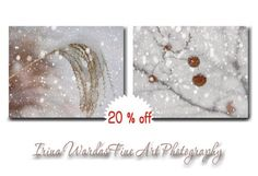SAVE 20 %: fine art winter photography set on gallery wrapped canvas in brown rust and neutral colors. Artist Irina Wardas
