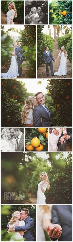 Bryana Likes Photography // Bride and Groom // Orange Groves // California Wedding