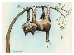 Now What?  Gary Patterson Cats & Kittens, Posters and Prints at Art.com