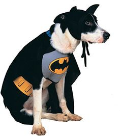 Rubies Costume DC Heroes and Villains Collection Pet Costume - Classic Batman - http://morehalloween.com/product/rubies-costume-dc-heroes-and-villains-collection-pet-costume-classic-batman/