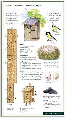 Bird Feeder Craft, Garden Bird Feeders, Bird House Feeder, Homemade Bird Houses, Bird Houses Diy, Garden Projects, Wood Projects, Bird House Plans Free, J Birds