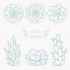 19 ideas for succulent art illustration cactus flower Succulents Drawing, Watercolor Succulents, Planting Succulents, Succulents Painting, Succulents Art, Cactus Flower, Cactus Plants, Succulent Plants, Cacti