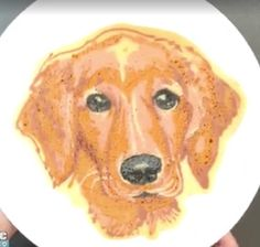 """""""Dad Makes Colorful Artistic Pancakes for His Kid"""" Pancake Art, Cute Baking, How To Make Breakfast, Recipe For Mom, Edible Art, Cute Food, No Bake Desserts, Food Dishes, Food Art"""