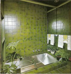 Happiness is a Green Bathroom. by glen.h, via Flickr