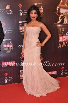 Chitrangda Singh at the Screen Awards
