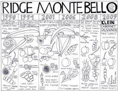 Vertical Tasting of Ridge Monte Bello