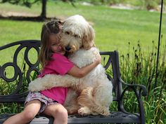 Sweet #goldendoodle reminds me of a big falcor ~ MORE HUGS ~ ANOTHER REASON EVERY CHILD DESERVES TO HAVE A PET ~