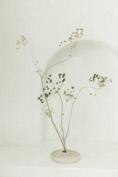 Ikebana with dried flowers Ikebana, Floral Wedding, Wedding Flowers, Diy Décoration, Minimalist Wedding, Dried Flowers, Garden Inspiration, Flower Designs, Decoration