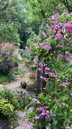 Garden Paths, Lawn And Garden, Types Of White Flowers, Beautiful Gardens, Beautiful Flowers, Garden Of Earthly Delights, Flower Garden Design, Garden Whimsy, Gardening