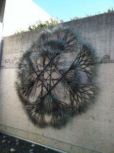 Ruth Asawa ( sculptrice nippo-américaine 1926-2013). Cette sculpture est fixée sur le mur de l'Oakland Museum of California. Ruth Asawa, Sculpture Art, Sculptures, Wire Trees, Weaving Projects, Wire Art, String Art, Art Education, Basket Weaving