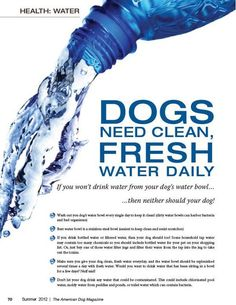 Dogs need clean water daily. #viqua