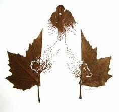 Wonderfully Intricate Cut Leaf Art by Omid Asadi  123 Inspiration