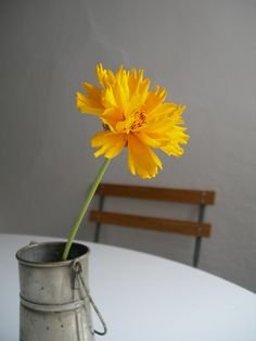 love is the little things. by catarina clemente♡, via Flickr