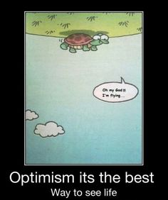 cute laughing turtle   Upside Down Turtle Quote