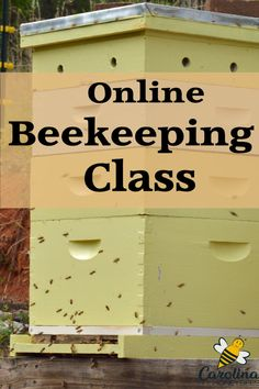 If you are looking for a quality, easy to understand beekeeping course - this is it. Everything you need to know in this online beekeeping class to help you become a beekeeper this year. Beekeeping Course, Backyard Beekeeping, Bee Hive Plans, Beekeeping For Beginners, Raising Bees, Bee Boxes, Bee Farm, Bee Friendly, Aquaponics System