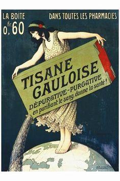 Tisane Gauloise  Giclee