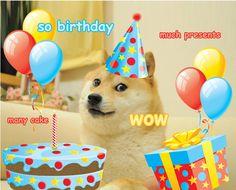 Resultado de imagem para doge happy birthday meme