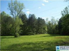 19+/- acres on Warrior Jasper Road. No value given to 3BR/2BA house on property. Value in land only. Beautiful property with gorgeous building site. Very desirable and growing area. Seller willing to have house removed from property.