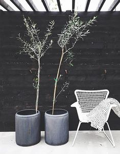 ambiente_preto_decorado_com_plantas_blog_casa_atelier23