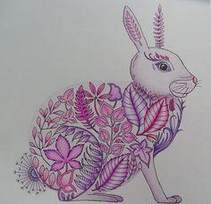 Rabbit (Johanna Basford - Enchanted Forest)