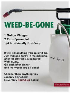 Saw this online and Im wondering if anyone has tried it? Im a true newbie in the yard and Im looking for natural weed killer recipes that work. Really want to avoid RoundUp! Garden Yard Ideas, Lawn And Garden, Garden Projects, Diy Cleaning Products, Cleaning Hacks, Cleaning Mold, Container Gardening, Gardening Tips, Organic Gardening