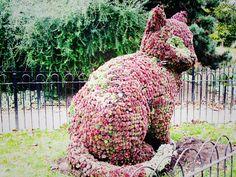 mizhenka: Islington's Floral Cat Sculpture