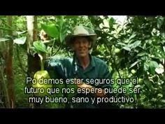 ESTABLECIENDO BOSQUES COMESTIBLES, GEOFF LAWTON Sub  en español